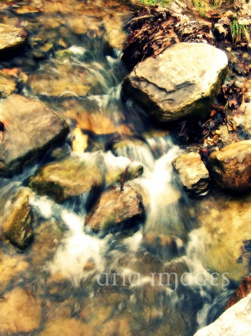 Ebb original signed fine art photography by aria images for Buy fine art photography online