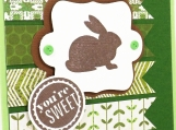 Easter Card with Easter Bunny on Spring Green