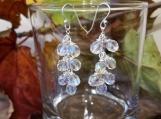 Silver Plate Dangle Earrings