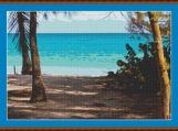 Access To The Beach Cross Stitch Pattern
