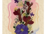 Real Pressed Flower All-Occasion Card with Cardinal Flower