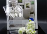 Silver Dangle Rhinestone Earring Set