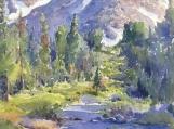 High Sierra Spring - Crankcase Grade of Rock Creek, California