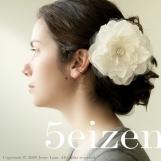 Meghan Series II - Hair Clip and Brooch