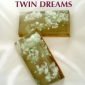 Twin Dreams