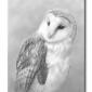 Barn Owl Beadery