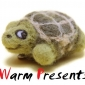 WarmPresents